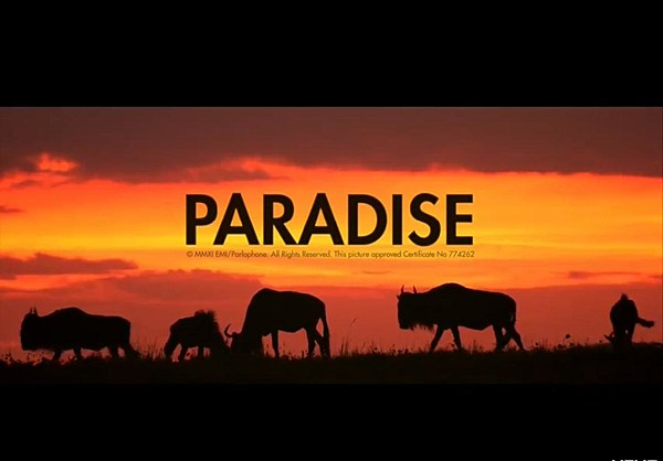 paradise by coldplay song analysis